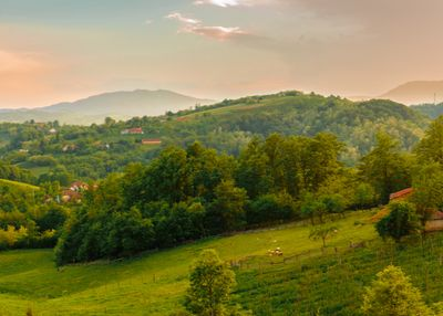 Protected nature in Serbia – importance for all citizens