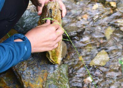 Mreža Natura 2000, osnovni alat za zaštitu prirode