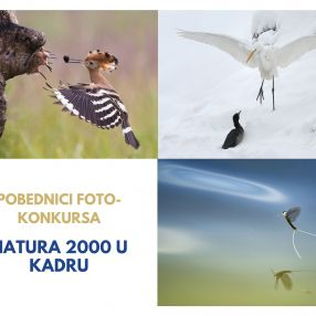 "Awarded prizes of the photo contest ""Natura 2000 in the frame"""